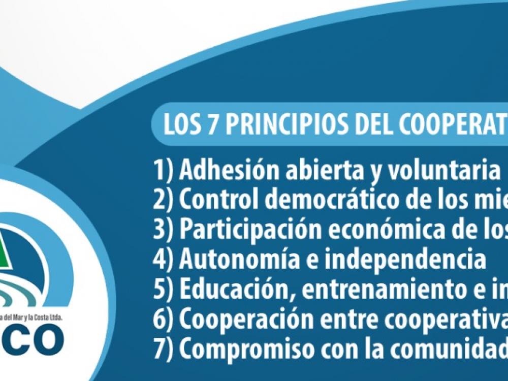 Día Internacional del Cooperativismo